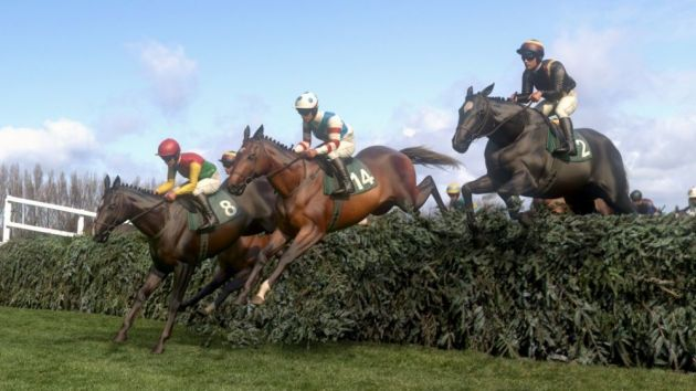 Virtual Grand National raises £2.6 million for National Health Service - in pics