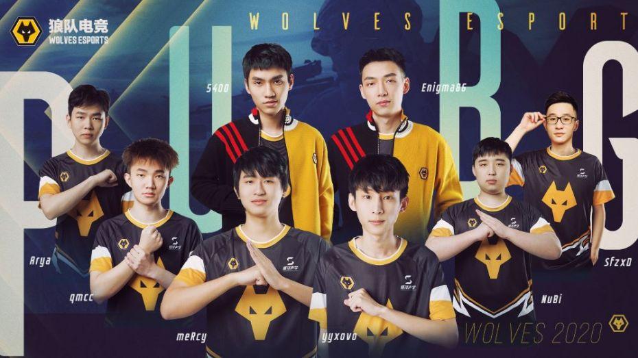 wolf team e sports betting