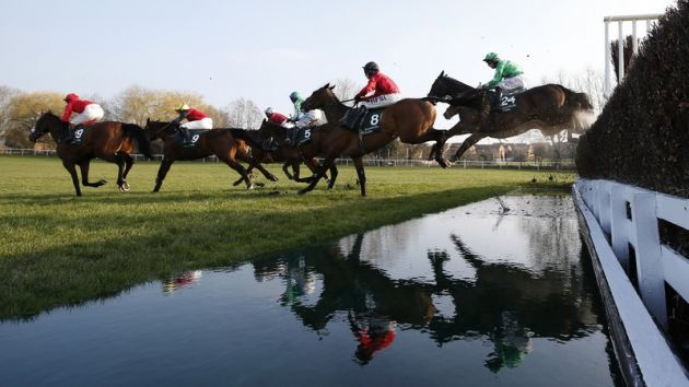 Punchestown gold cup betting odds current value of bitcoins to dollars